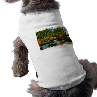 Rustic Beauty is Sublime Greetings Boyne City, MI Dog Clothes