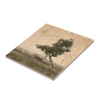 Rustic beige textured tree on farm photograph ceramic tile