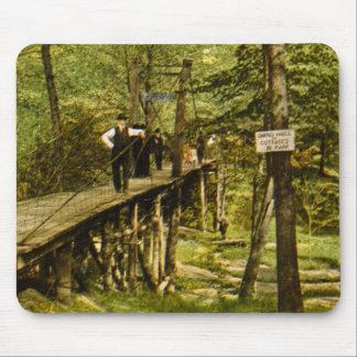 Rustic Bridge Eastman Springs Benton Harbor Mi Mouse Pad
