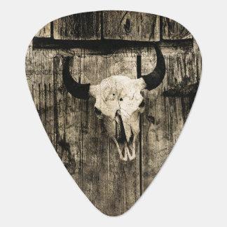 Rustic buffalo skull with horns against barn plectrum