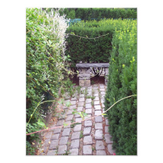 Rustic Cobblestone Garden Path Photo Art