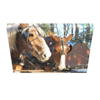Rustic Country Home Horse Canvas Canvas Print