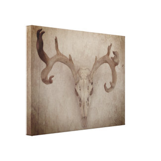 Rustic Deer Skull print on stretched canvas