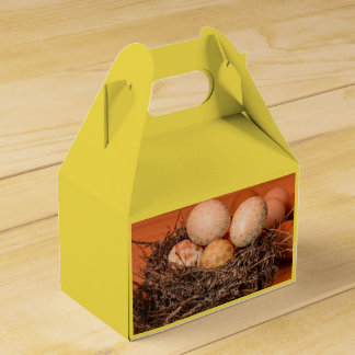 Rustic Easter eggs in nest Favour Box