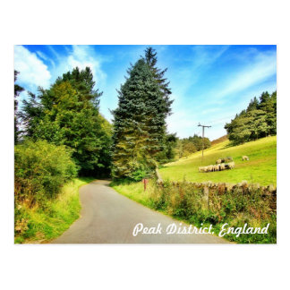 Rustic England! Postcard