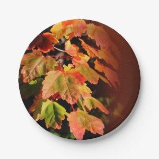 Rustic Fall Wedding Autumn Foliage Photo Leaves 7 Inch Paper Plate