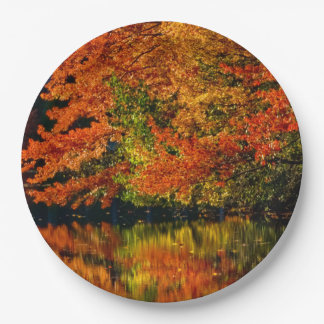 Rustic Fall Wedding Colours Autumn Reflection 9 Inch Paper Plate