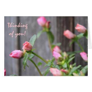 Rustic Floral Thinking of You, Flowers/Wood Fence Card