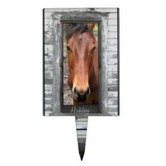 Rustic Framed Horse Head Personalize Cake Toppers