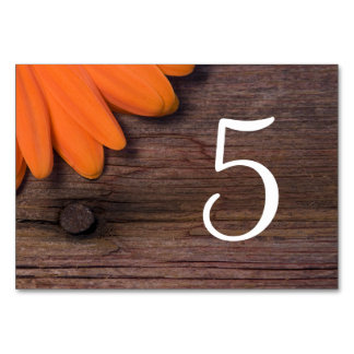 Rustic Orange Daisy Barn Wedding Table Numbers