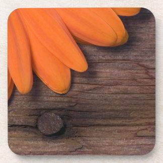 Rustic Orange Daisy Cork Coaster Set