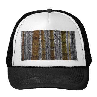 Rustic Pines Trucker Hats