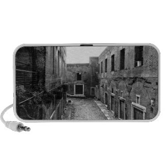 Rustic Rome iPod Speakers