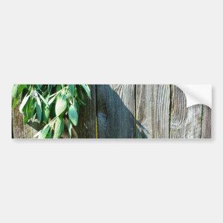 Rustic Sage Bumper Sticker