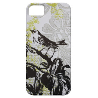 rustic shabby elegance french country bird case for the iPhone 5