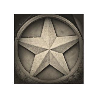 Rustic Texas Lonestar Wood Wall Art