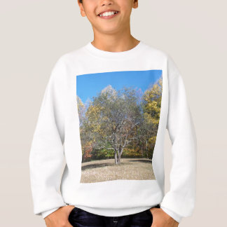 Rustic Tree & Blue Sky Sweatshirt