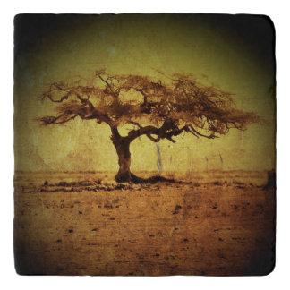 Rustic Tree Trivet