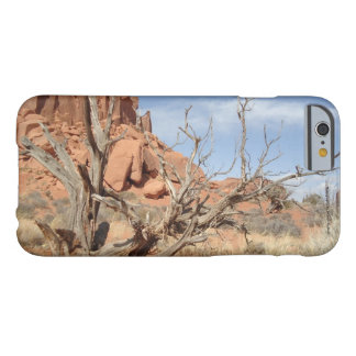 Rustic Utah Barely There iPhone 6 Case