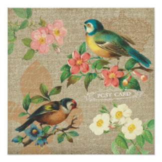 Rustic Vintage Birds and Flowers Shabby Elegance Poster