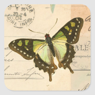 Rustic vintage butterfly in green sticker