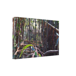 Rustic Vintage Foot Bridge Through Gum Trees, Canvas Print