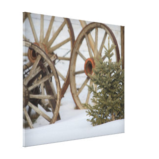 Rustic Wagon Wheels Pine Tree in Snow Canvas Print