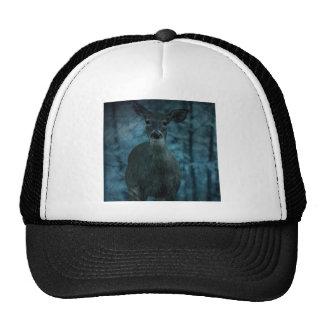rustic whitetail deer in the rain hat