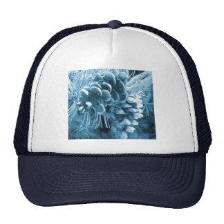 rustic winter blue pinecone design cap