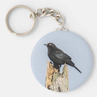 Rusty Blackbird Basic Round Button Key Ring