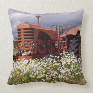 Rusty Red Vintage Tractor in Daisies Cushion