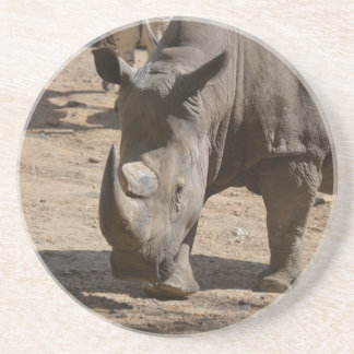 Rutting Rhino Coaster