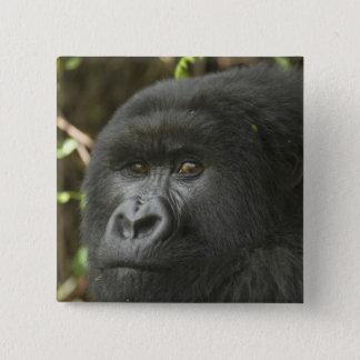 Rwanda, Volcanoes National Park. Mountain 2 15 Cm Square Badge