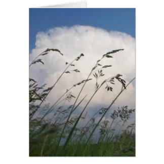 """Rye and Sky"" Photo Card"