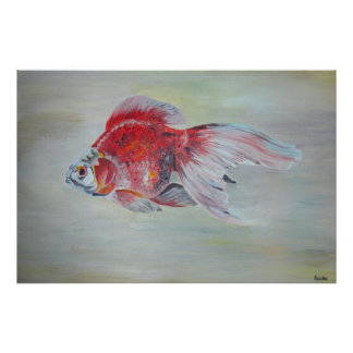 Ryukin Goldfish Print