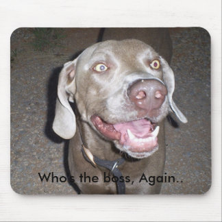 S5030845 Who s the boss Again Mouse Pad