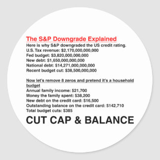 S&P Downgrade Explained Sticker