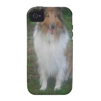 Sable Rough Collie iPhone 4 Case
