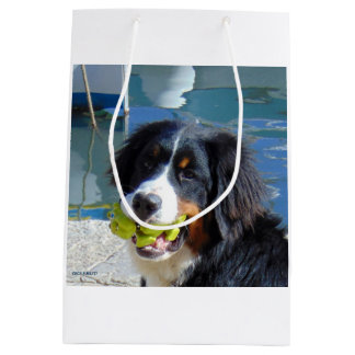 SAC GIFTS FOR ANIMALS! MEDIUM GIFT BAG