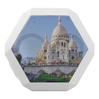 Sacre Coeur Basilica, French Architecture, Paris