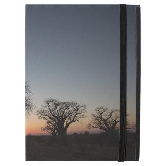 Sacred Baobabs