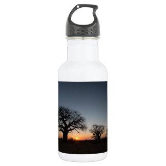 Sacred Baobabs 532 Ml Water Bottle