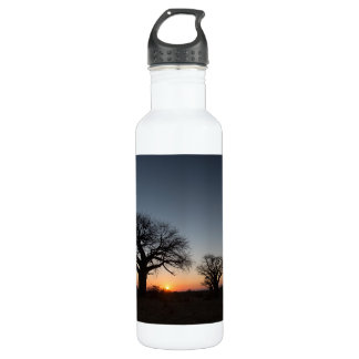 Sacred Baobabs 710 Ml Water Bottle