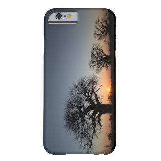 Sacred Baobabs Barely There iPhone 6 Case