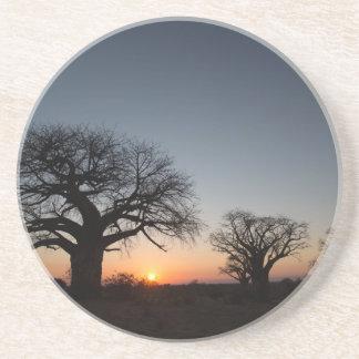 Sacred Baobabs Coaster