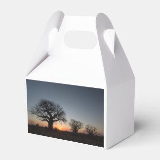 Sacred Baobabs Favour Box