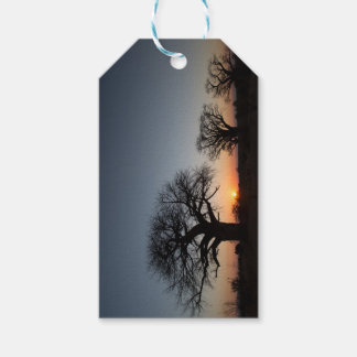 Sacred Baobabs Gift Tags