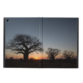 Sacred Baobabs iPad Air Case