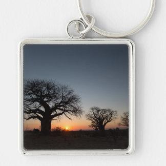 Sacred Baobabs Key Ring