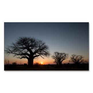 Sacred Baobabs Magnetic Business Card